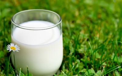 Молоко и магия