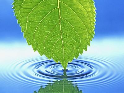Особенности ритуалов с использованием воды