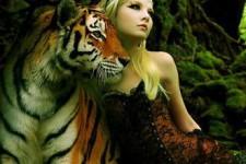 Союз Тигра и Змеи