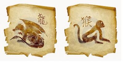 Совместимость по гороскопу Дракона и Обезьяны