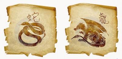 Дракон и Змея – жизнь в гармонии