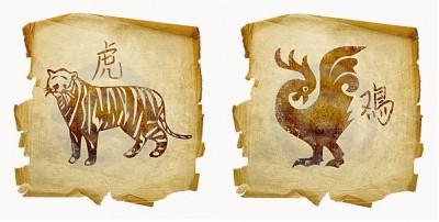 Тигр и Петух: тяжелый союз?