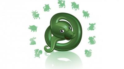 Характер Змеи