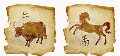 Особенности отношений в паре Бык – Лошадь
