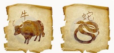 Бык и Змея – гармония в отношениях