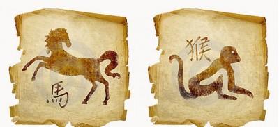 Обезьяна и Лошадь. Прекрасные отношения возможны