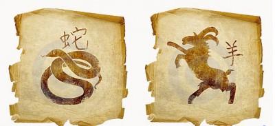Особенности отношений Змеи и Козы