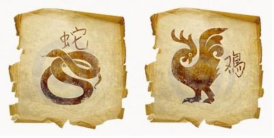 Петух и Змея: уютное семейное гнездышко