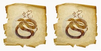 Как выглядит союз двух Змей
