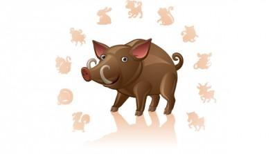 Характер Свиньи (Кабана)