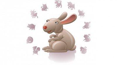 Характер Кролика (Кота)
