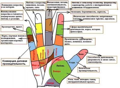 Значение пальцев рук