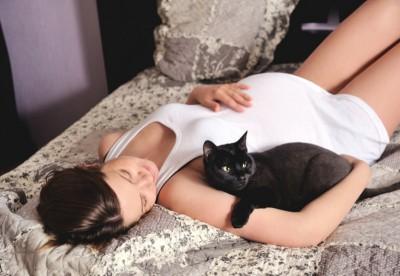 Кошки и беременные женщины