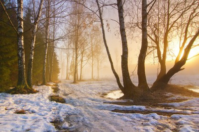 Таяние снега от солнца