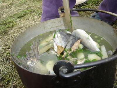 Уха из свежей рыбы