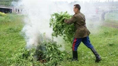 Сжигание травы