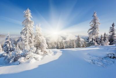 Январская погода