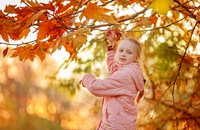 Теплая осень - признак холодной зимы