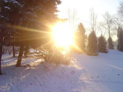 Яркое солнце - к ранней весне