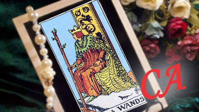 Король Жезлов Таро: сочетание со Старшими Арканами